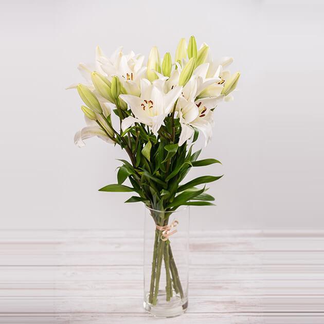 Šopek bele lilije iz sopek.si