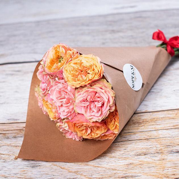 sopek - angleške vrtnice 3