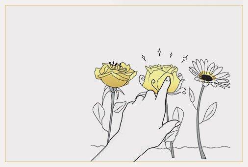 Spletna cvetlicarna kako deluje