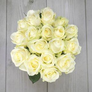 šopek belih vrtnic v vazi