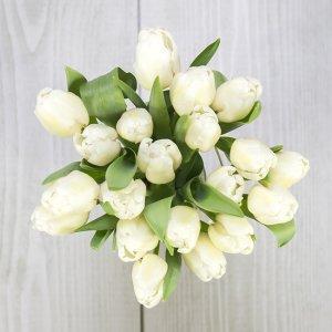 šopek belih tulipanov
