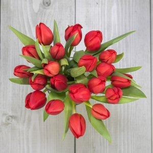 šopek rdečih tulipanov