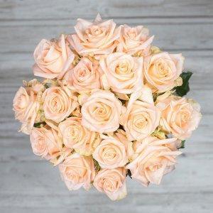 šopek vrtnic alina