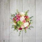 poroke sopek iz ranunkule clooney bouvardije kaapsa zelenega thlaspija ranunkul vrtnic mnogocvetnih vrtnic